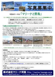 Photo_Gallery_in_Marina_Kawage.jpg