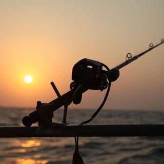 sea-fishing-2564892_1920.jpg